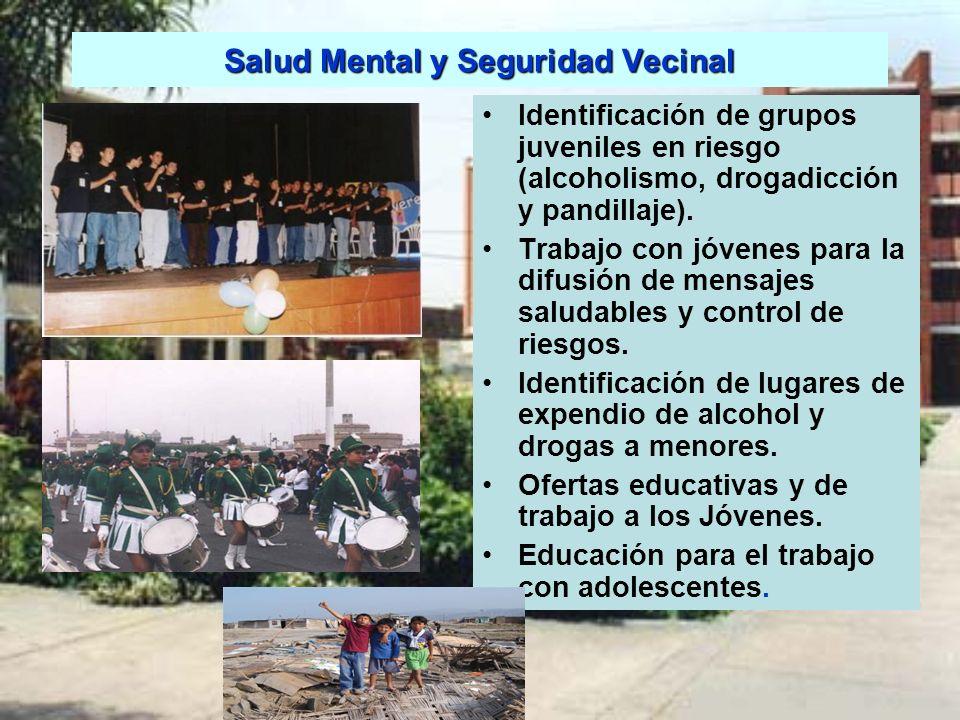 Salud Mental y Seguridad Vecinal Identificación de grupos juveniles en riesgo (alcoholismo, drogadicción y pandillaje). Trabajo con jóvenes para la di