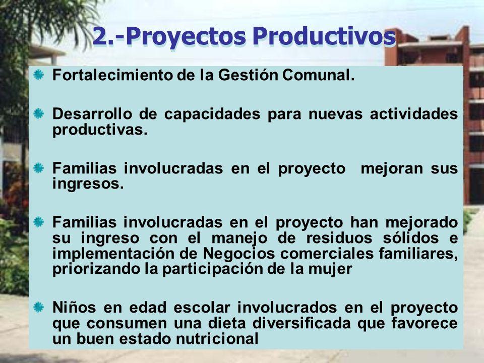 2.-Proyectos Productivos Fortalecimiento de la Gestión Comunal. Desarrollo de capacidades para nuevas actividades productivas. Familias involucradas e