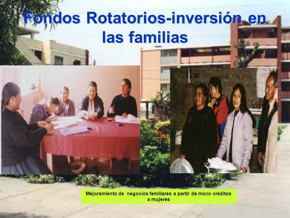 Fondos Rotatorios-inversión en las familias Mejoramiento de negocios familiares a partir de micro créditos a mujeres