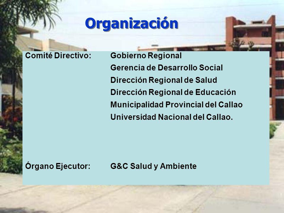 Organización Comité Directivo:Gobierno Regional Gerencia de Desarrollo Social Dirección Regional de Salud Dirección Regional de Educación Municipalida