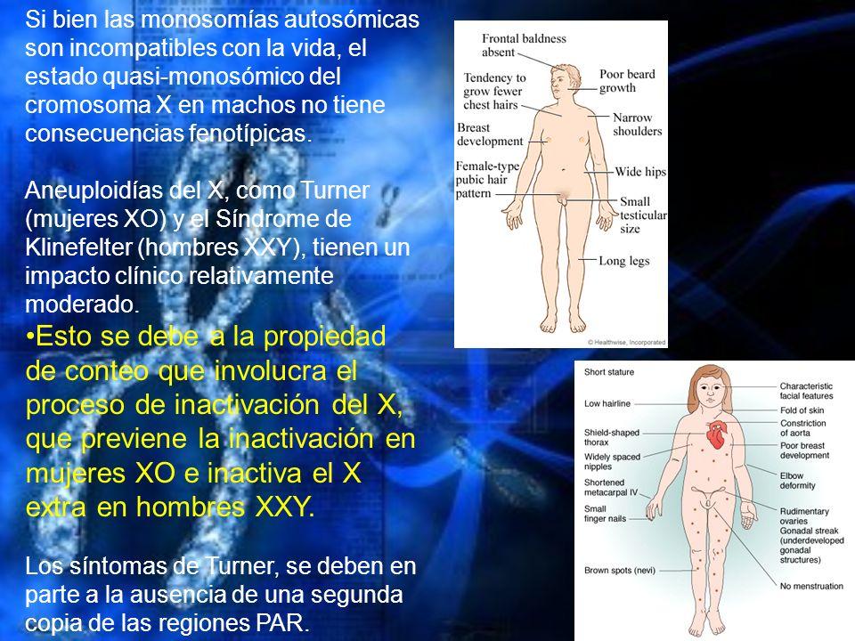 Si bien las monosomías autosómicas son incompatibles con la vida, el estado quasi-monosómico del cromosoma X en machos no tiene consecuencias fenotípi