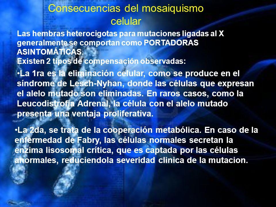 Las hembras heterocigotas para mutaciones ligadas al X generalmente se comportan como PORTADORAS ASINTOMÁTICAS. Existen 2 tipos de compensación observ