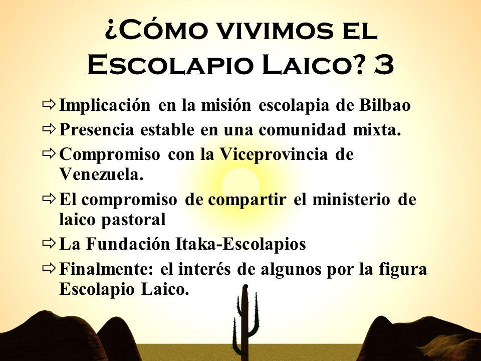 01/01/201410 Implicación en la misión escolapia de Bilbao Presencia estable en una comunidad mixta. Compromiso con la Viceprovincia de Venezuela. El c