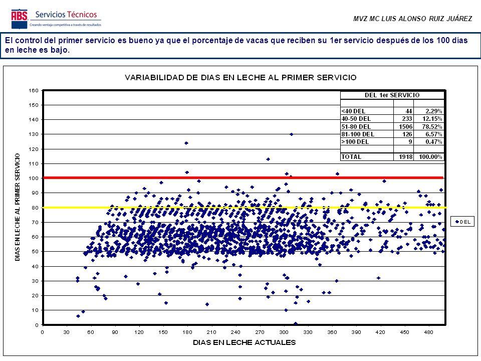 24 VACAS EVALUADAS CC EN EL RANGO DESEABLE 91.7% CC ARRIBA DE RANGO 8.3% CC DEBAJO DE RANGO 0% 91 VAQUILLAS DE 1RA LACTANCIA EVALUADAS CC EN EL RANGO DESEABLE 90.1% CC ARRIBA DE RANGO 2.2% CC DEBAJO DE RANGO 7.7%