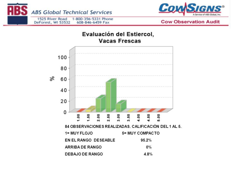 84 OBSERVACIONES REALIZADAS. CALIFICACIÓN DEL 1 AL 5. 1= MUY FLOJO 5= MUY COMPACTO EN EL RANGO DESEABLE 95.2% ARRIBA DE RANGO 0% DEBAJO DE RANGO 4.8%