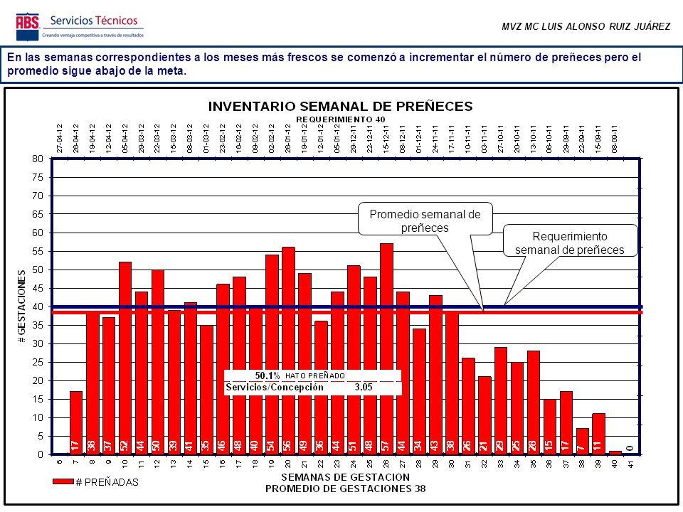 MVZ MC LUIS ALONSO RUIZ JUÁREZ La tasa de preñez de los primeros ciclos (los más importantes) está abajo de la meta, lo cual implica que las vacas se están preñando en un periodo un poco más amplio de lo deseable (respecto a sus días en leche).