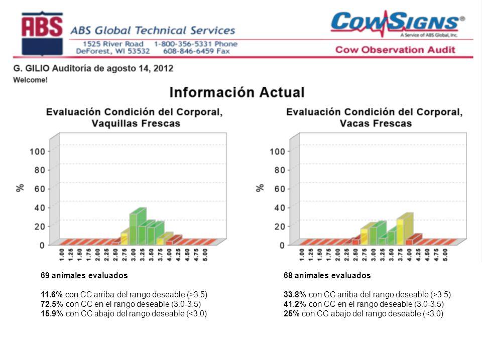 69 animales evaluados 11.6% con CC arriba del rango deseable (>3.5) 72.5% con CC en el rango deseable (3.0-3.5) 15.9% con CC abajo del rango deseable (<3.0) 68 animales evaluados 33.8% con CC arriba del rango deseable (>3.5) 41.2% con CC en el rango deseable (3.0-3.5) 25% con CC abajo del rango deseable (<3.0)