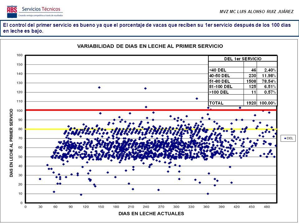 MVZ MC LUIS ALONSO RUIZ JUÁREZ El control del primer servicio es bueno ya que el porcentaje de vacas que reciben su 1er servicio después de los 100 días en leche es bajo.