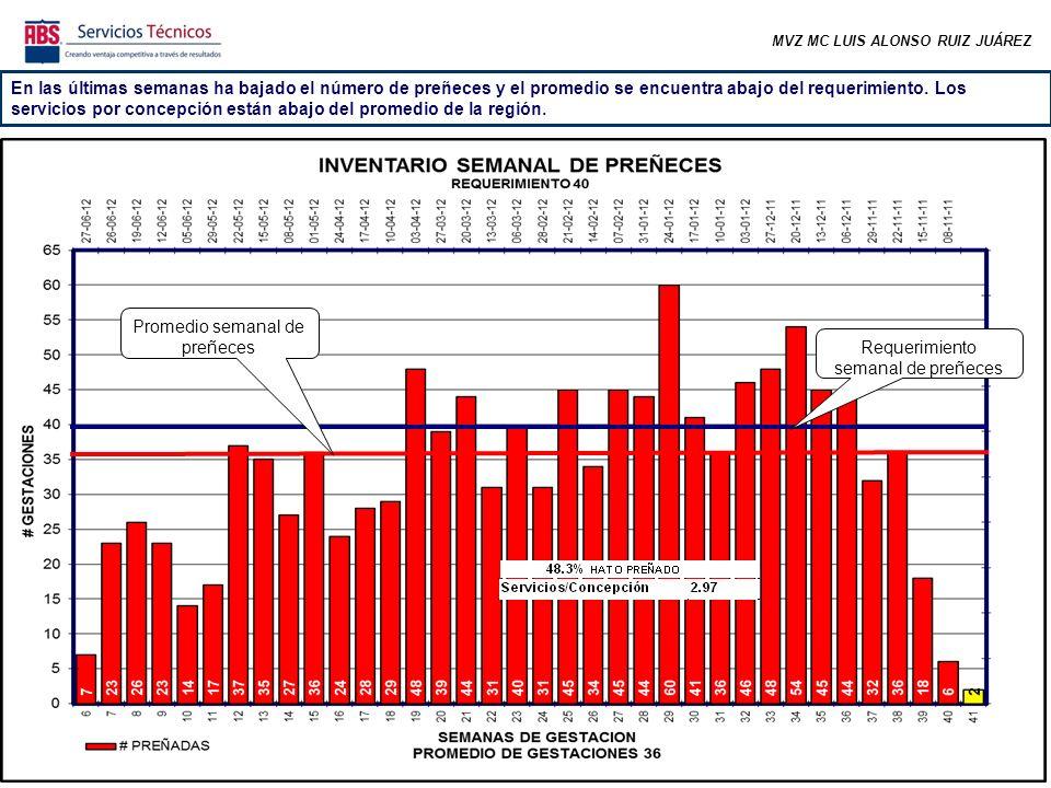 MVZ MC LUIS ALONSO RUIZ JUÁREZ En las últimas semanas ha bajado el número de preñeces y el promedio se encuentra abajo del requerimiento.