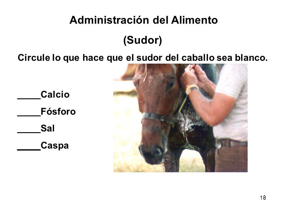 18 Administración del Alimento (Sudor) Circule lo que hace que el sudor del caballo sea blanco. Calcio Fósforo Sal _____ Caspa