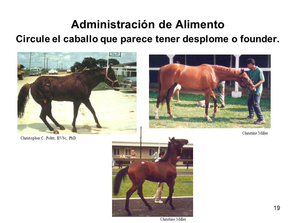 19 Administración de Alimento Circule el caballo que parece tener desplome o founder. Christopher C. Politt, BVSc, PhD Christine Miller