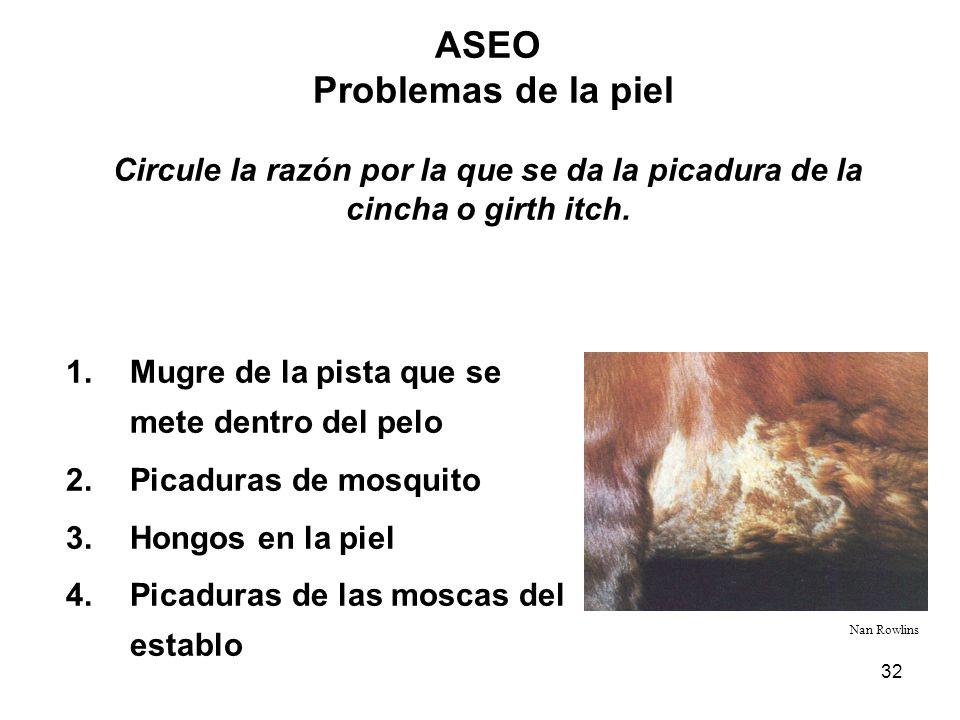32 ASEO Problemas de la piel Circule la razón por la que se da la picadura de la cincha o girth itch. Nan Rowlins 1.Mugre de la pista que se mete dent