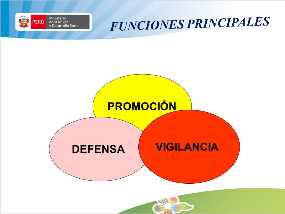 FUNCIONES PRINCIPALES PROMOCIÓN DEFENSA VIGILANCIA