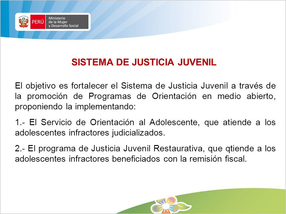 SISTEMA DE JUSTICIA JUVENIL El objetivo es fortalecer el Sistema de Justicia Juvenil a través de la promoción de Programas de Orientación en medio abi