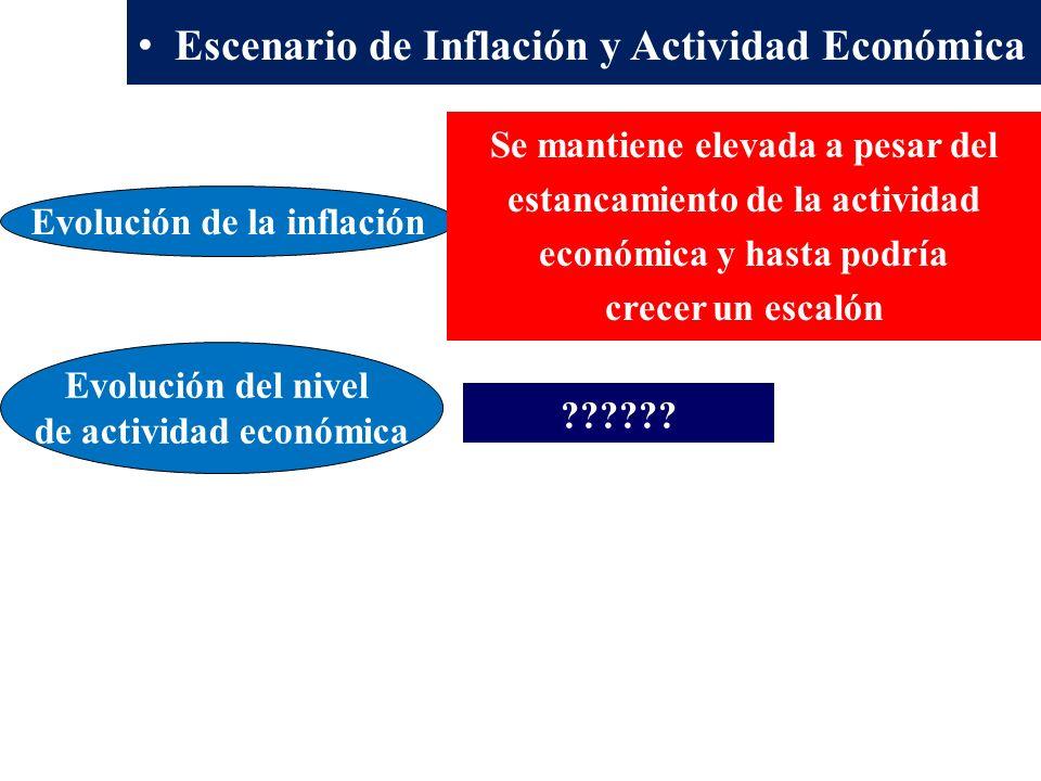 Evolución del nivel de actividad económica .