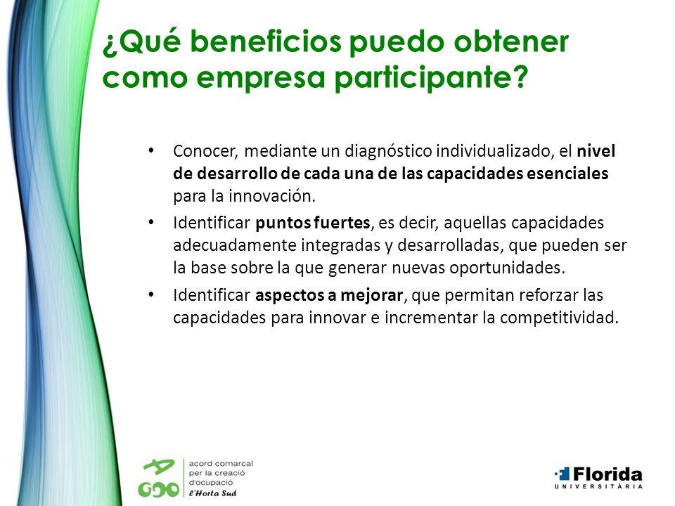 ¿Qué beneficios puedo obtener como empresa participante? Conocer, mediante un diagnóstico individualizado, el nivel de desarrollo de cada una de las c