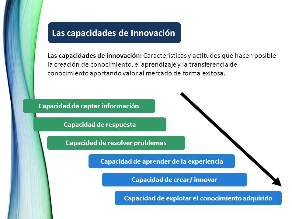 Capacidad de captar información Capacidad de respuesta Capacidad de resolver problemas Capacidad de aprender de la experiencia Capacidad de crear/ inn