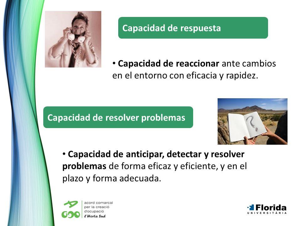 Capacidad de anticipar, detectar y resolver problemas de forma eficaz y eficiente, y en el plazo y forma adecuada. Capacidad de resolver problemas Cap