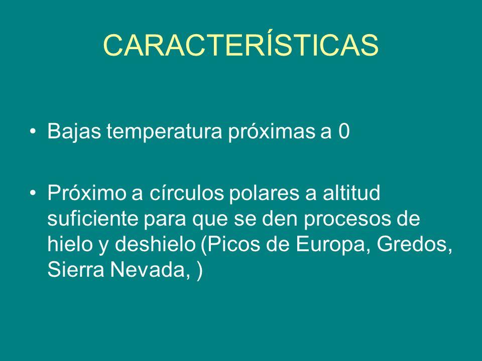 CARACTERÍSTICAS Bajas temperatura próximas a 0 Próximo a círculos polares a altitud suficiente para que se den procesos de hielo y deshielo (Picos de