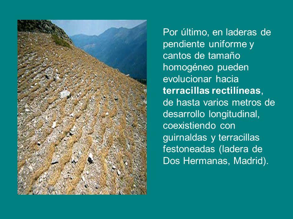 Por último, en laderas de pendiente uniforme y cantos de tamaño homogéneo pueden evolucionar hacia terracillas rectilíneas, de hasta varios metros de