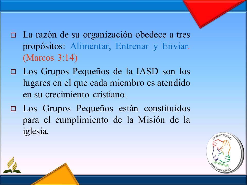 La razón de su organización obedece a tres propósitos: Alimentar, Entrenar y Enviar. (Marcos 3:14) Los Grupos Pequeños de la IASD son los lugares en e