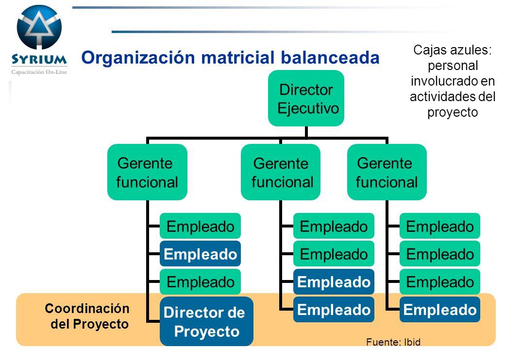 Rosario Morelli, PMP Organización matricial balanceada Coordinación del Proyecto Cajas azules: personal involucrado en actividades del proyecto Fuente