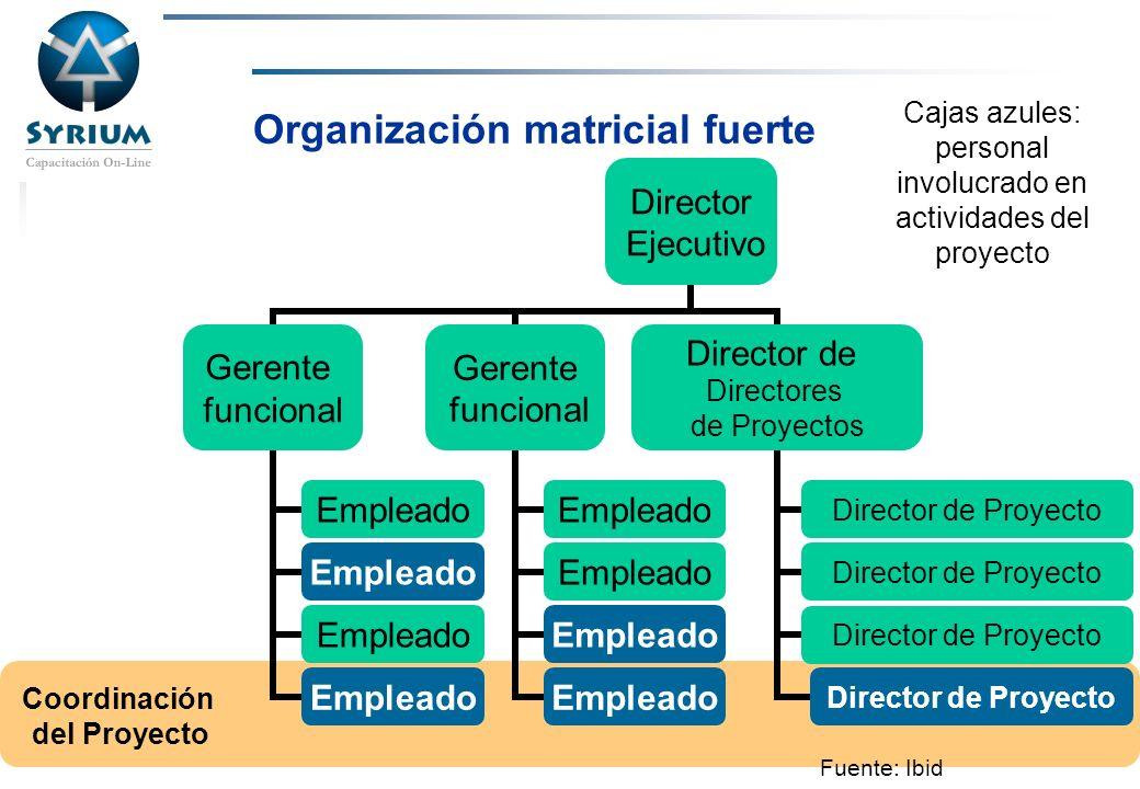 Rosario Morelli, PMP Organización matricial fuerte Coordinación del Proyecto Cajas azules: personal involucrado en actividades del proyecto Fuente: Ib