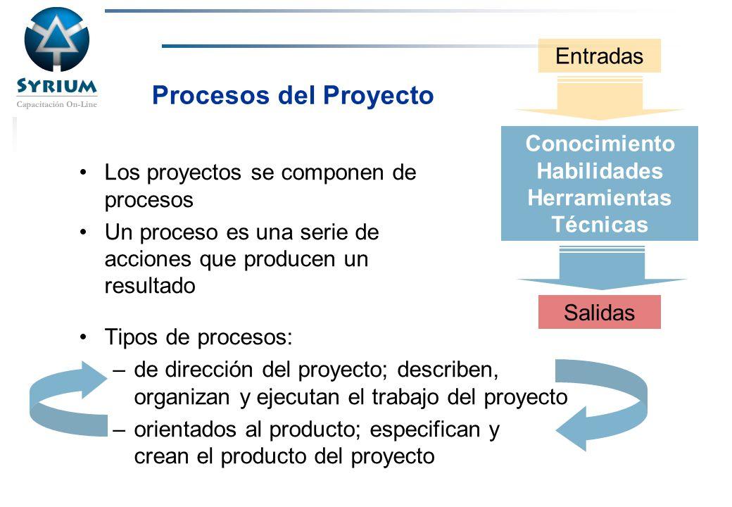 Rosario Morelli, PMP Procesos del Proyecto Los proyectos se componen de procesos Un proceso es una serie de acciones que producen un resultado Tipos d