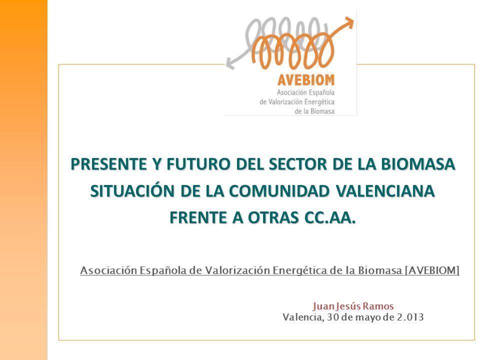 Asociación Española de Valorización Energética de la Biomasa [AVEBIOM] Juan Jesús Ramos Valencia, 30 de mayo de 2.013 PRESENTE Y FUTURO DEL SECTOR DE
