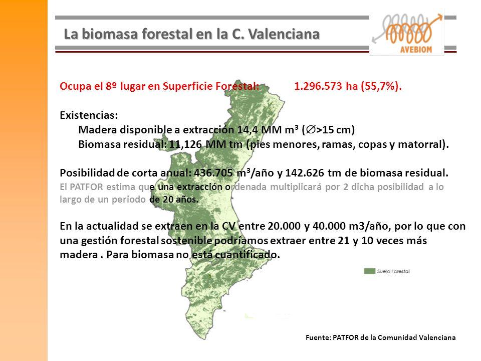 La biomasa forestal en la C. Valenciana Ocupa el 8º lugar en Superficie Forestal: 1.296.573 ha (55,7%). Existencias: Madera disponible a extracción 14