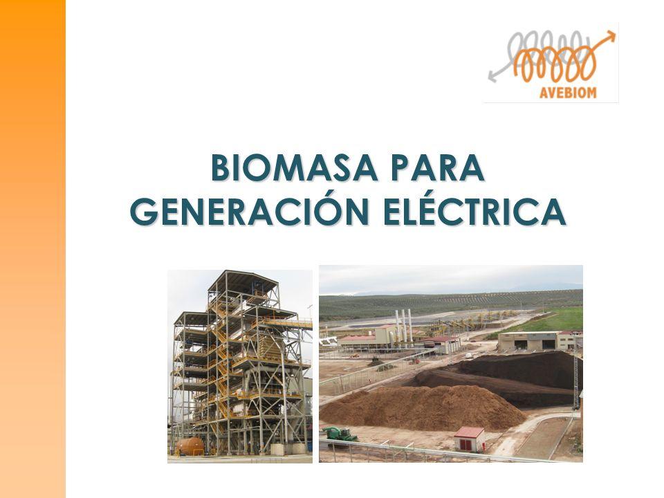 BIOMASA PARA GENERACIÓN ELÉCTRICA