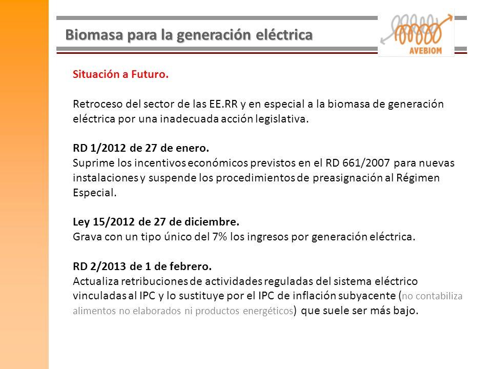 Biomasa para la generación eléctrica Situación a Futuro. Retroceso del sector de las EE.RR y en especial a la biomasa de generación eléctrica por una
