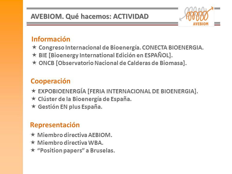 Información Congreso Internacional de Bioenergía. CONECTA BIOENERGIA. BIE [Bioenergy International Edición en ESPAÑOL]. ONCB [Observatorio Nacional de