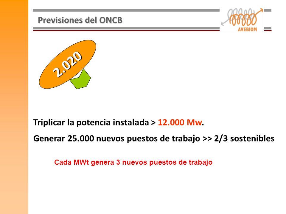 Previsiones del ONCB Triplicar la potencia instalada > 12.000 Mw. Generar 25.000 nuevos puestos de trabajo >> 2/3 sostenibles 2.020 Cada MWt genera 3