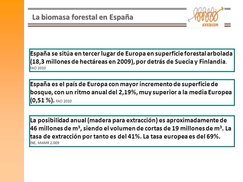 La biomasa forestal en España España se sitúa en tercer lugar de Europa en superficie forestal arbolada (18,3 millones de hectáreas en 2009), por detr