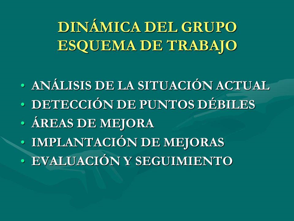 DINÁMICA DEL GRUPO ESQUEMA DE TRABAJO ANÁLISIS DE LA SITUACIÓN ACTUALANÁLISIS DE LA SITUACIÓN ACTUAL DETECCIÓN DE PUNTOS DÉBILESDETECCIÓN DE PUNTOS DÉ