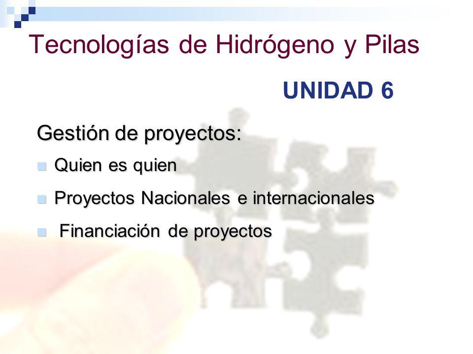 Tecnologías de Hidrógeno y Pilas de Combustible Gestión de proyectos: Quien es quien Quien es quien Proyectos Nacionales e internacionales Proyectos N