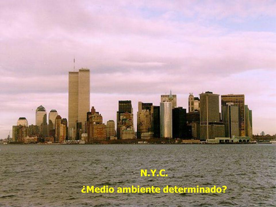N.Y.C. ¿Medio ambiente determinado?