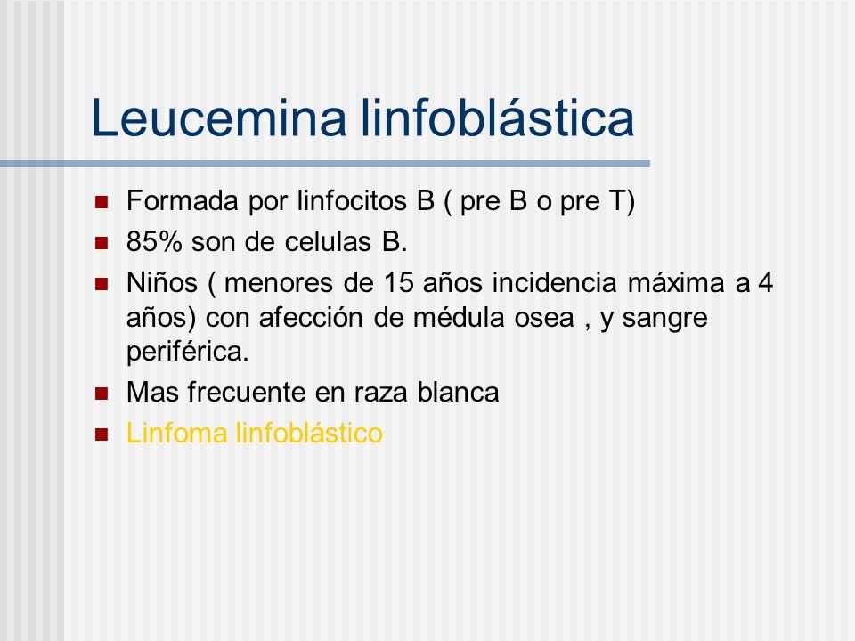 Leucemina linfoblástica Formada por linfocitos B ( pre B o pre T) 85% son de celulas B. Niños ( menores de 15 años incidencia máxima a 4 años) con afe