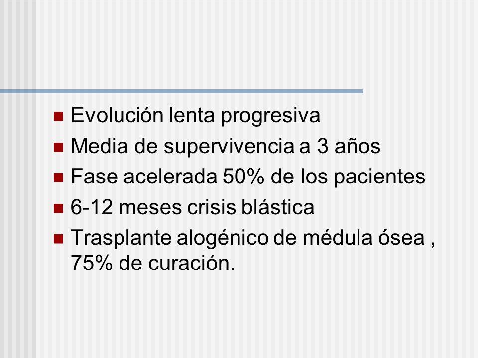 Evolución lenta progresiva Media de supervivencia a 3 años Fase acelerada 50% de los pacientes 6-12 meses crisis blástica Trasplante alogénico de médula ósea, 75% de curación.