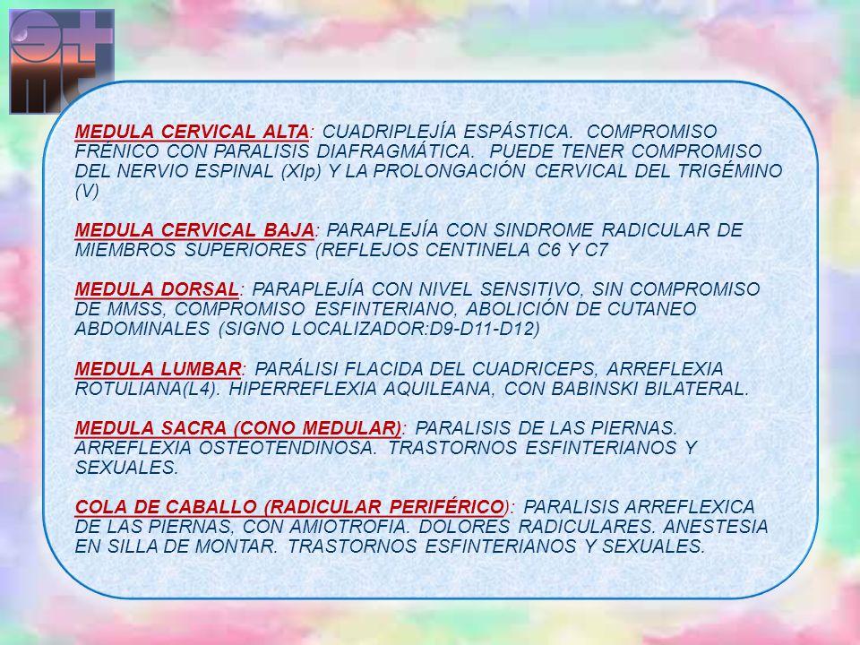 MEDULA CERVICAL ALTA: CUADRIPLEJÍA ESPÁSTICA. COMPROMISO FRÉNICO CON PARALISIS DIAFRAGMÁTICA. PUEDE TENER COMPROMISO DEL NERVIO ESPINAL (XIp) Y LA PRO