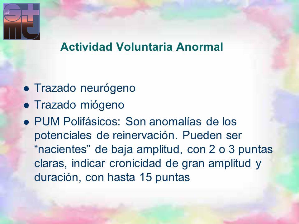 Actividad Voluntaria Anormal Trazado neurógeno Trazado miógeno PUM Polifásicos: Son anomalías de los potenciales de reinervación. Pueden ser nacientes