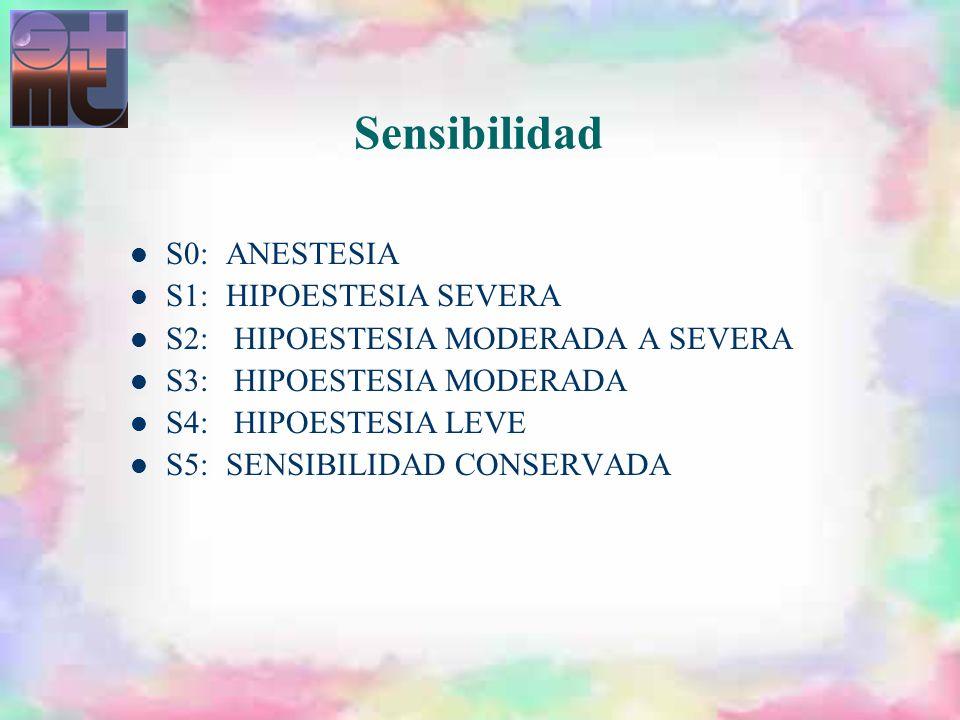 S0:ANESTESIA S1:HIPOESTESIA SEVERA S2: HIPOESTESIA MODERADA A SEVERA S3: HIPOESTESIA MODERADA S4: HIPOESTESIA LEVE S5:SENSIBILIDAD CONSERVADA Sensibil