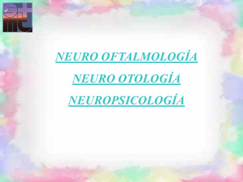 LABERINTITIS NEURONITIS VESTIBULAR NEURINOMA DEL ACUSTICO ENFERMEDAD DE MENIERE PLACA DE DESMIELINIZACION EN EL NUCLEO DEL VIII LESION ISQUEMICA DEL TRONCO ENCEFALICO (S.