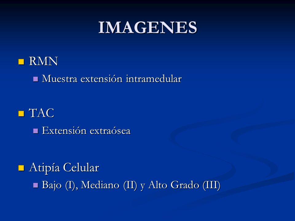 IMAGENES RMN RMN Muestra extensión intramedular Muestra extensión intramedular TAC TAC Extensión extraósea Extensión extraósea Atipía Celular Atipía C