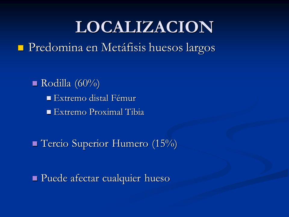 LOCALIZACION Predomina en Metáfisis huesos largos Predomina en Metáfisis huesos largos Rodilla (60%) Rodilla (60%) Extremo distal Fémur Extremo distal