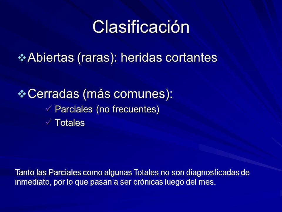 Clasificación Abiertas (raras): heridas cortantes Abiertas (raras): heridas cortantes Cerradas (más comunes): Cerradas (más comunes): Parciales (no fr
