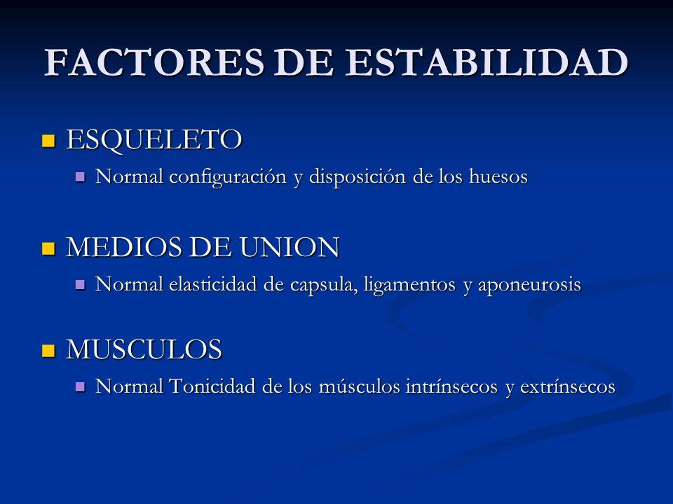 FACTORES DE ESTABILIDAD ESQUELETO ESQUELETO Normal configuración y disposición de los huesos Normal configuración y disposición de los huesos MEDIOS D