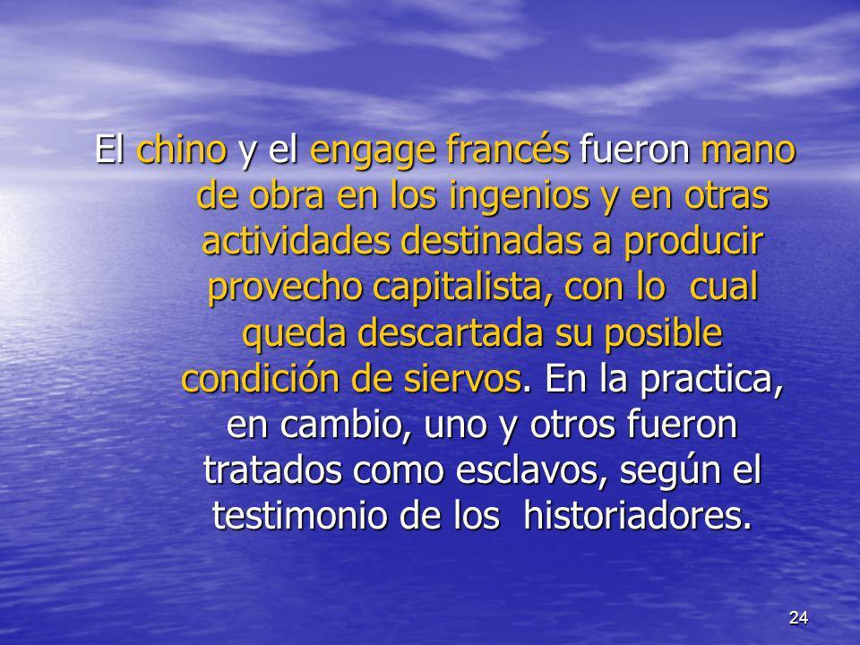24 El chino y el engage francés fueron mano de obra en los ingenios y en otras actividades destinadas a producir provecho capitalista, con lo cual que