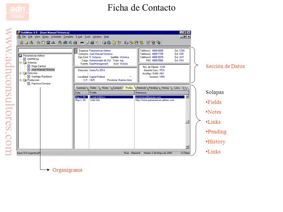 www.adnconsultores.com Ficha de Contacto Sección de Datos Solapas Fields Notes Links Pending History Links Organigrama